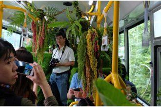 Tayvan'daki orman otobüsüne gezginlerden yoğun ilgi